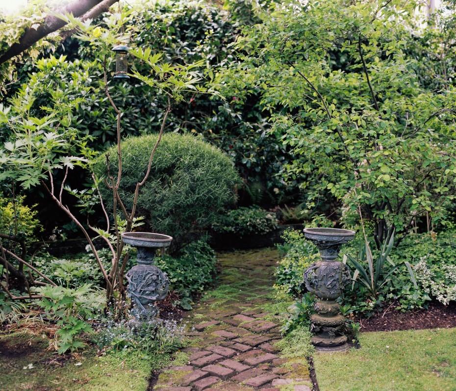 The Botanical Gardener