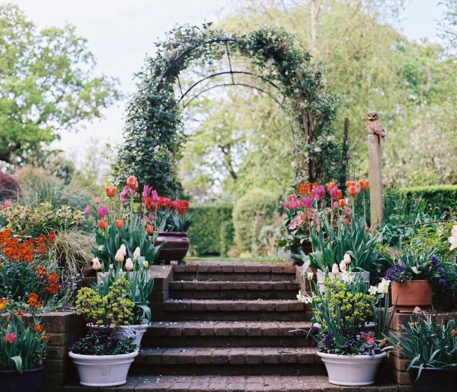 Large established garden, North London